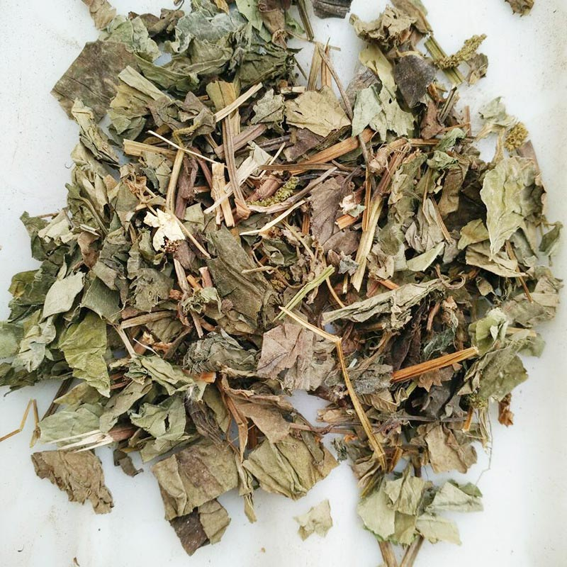 Start up to need one Chinese herbal medicine processing equipment of Houttuynia cordata -new-s-houttuynia-cordata-16