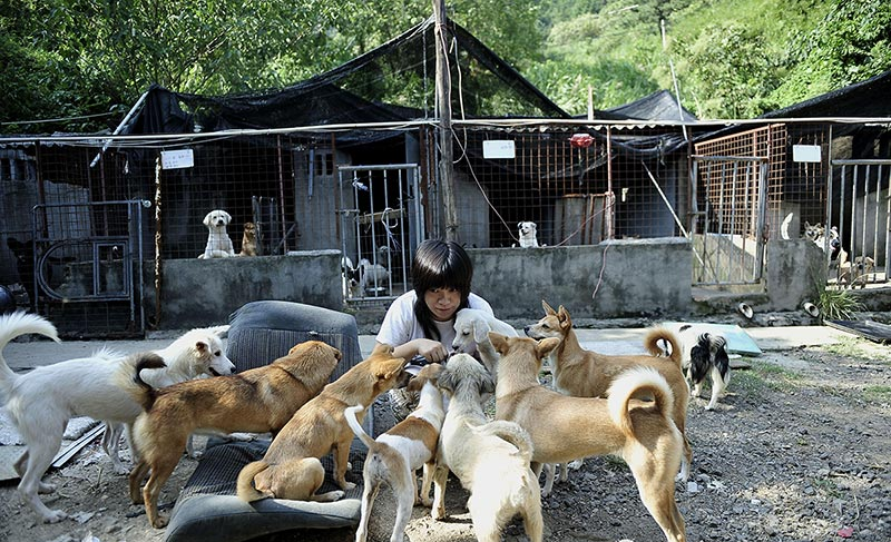 This girl adopt small animals for 20 years and eating and living with the dog -new-s-min-s-girl-adot-animals-1